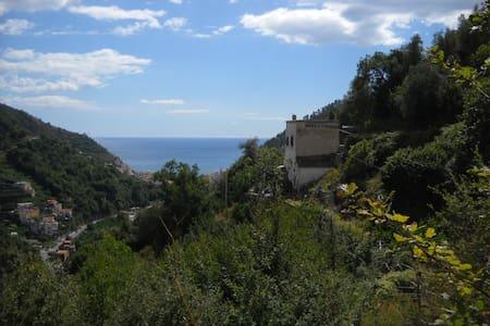 PALOMBA HOUSE OPENS ITS DOORS  - Maiori - House