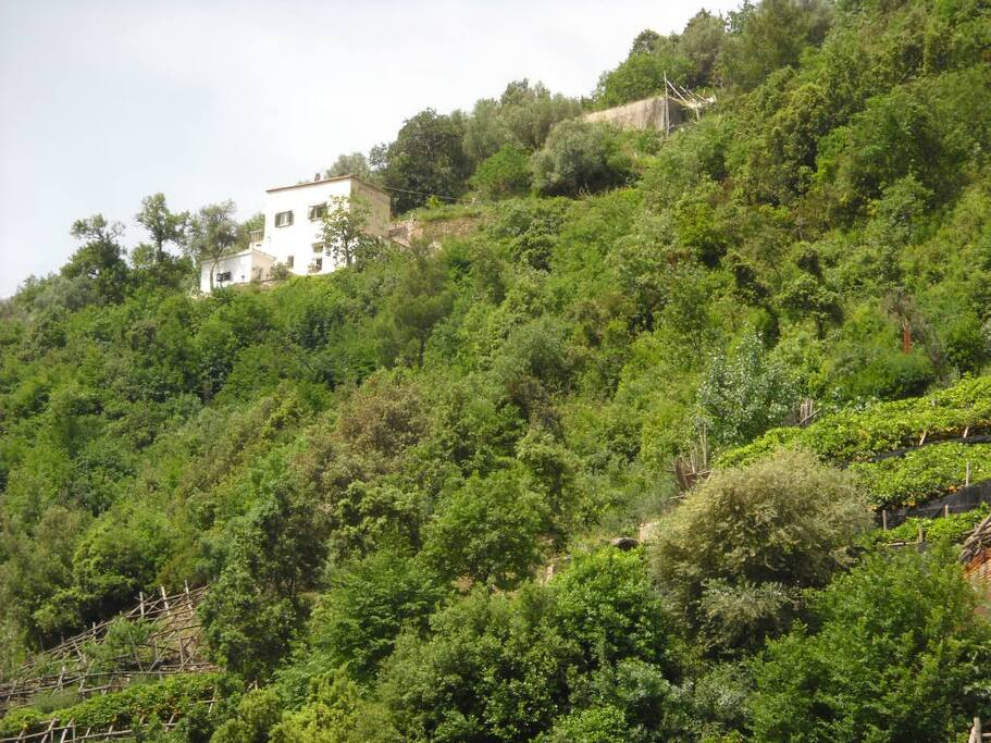 Casa Palomba vista dalla strada