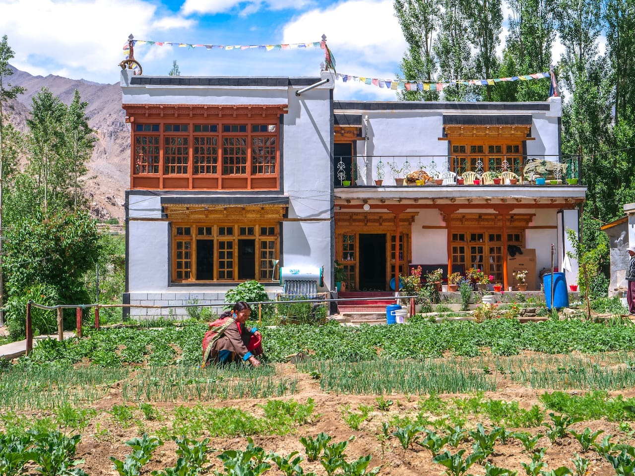 Farmstay Amaley working on her annual vegetable garden during the growing summer season.