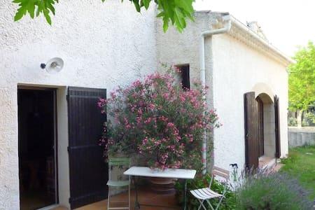 Under the Petit Luberon, Provence