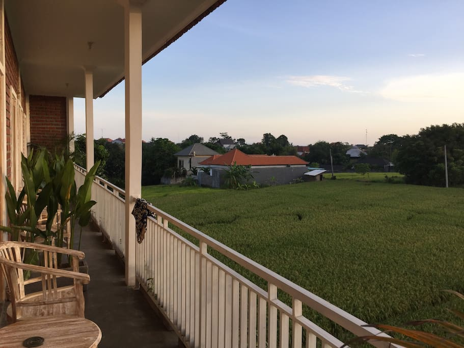 rice field view right in front of the room which is giving you chance to enjoy your free time there