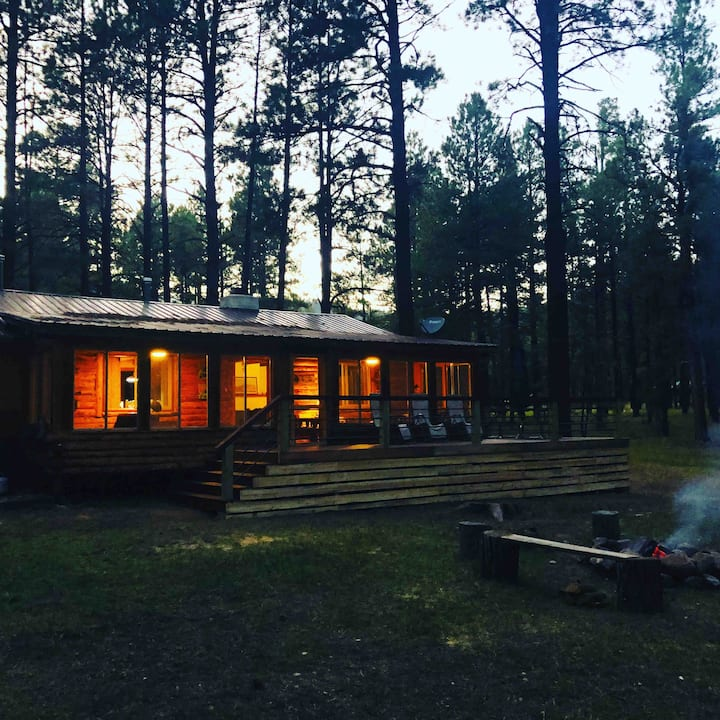 Salmo Trutta Log Cabin - Jemez Mountains