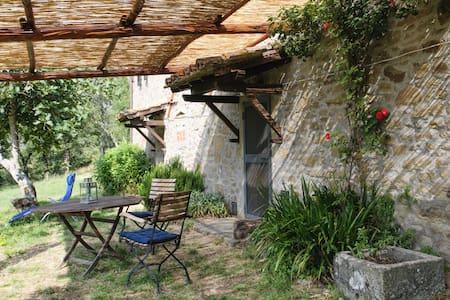 Amazing views and lots of peace! - Cortona
