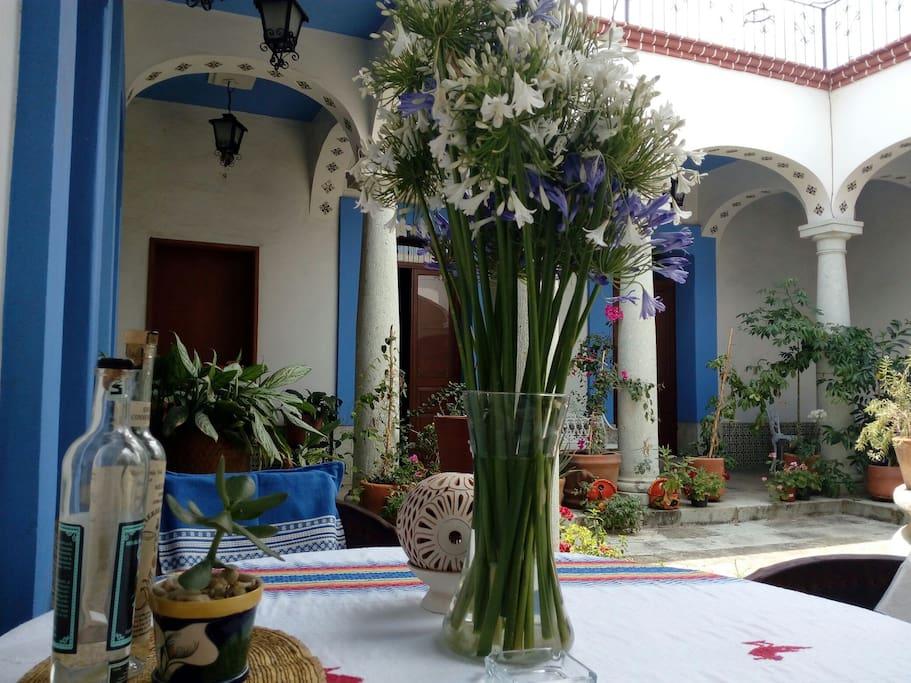 Prueba la experiencia de vivir en una hermosa casa colonial del Siglo XVIII en Oaxaca