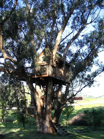 great tree house on property
