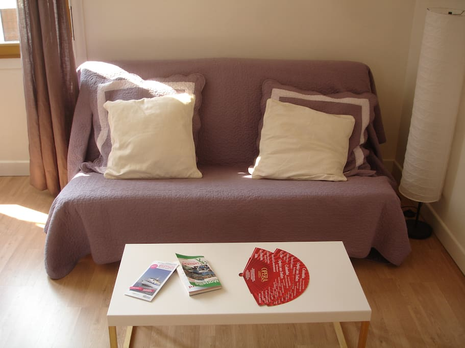 Dans le salon, le canapé-lit de 1,60 mètre de large