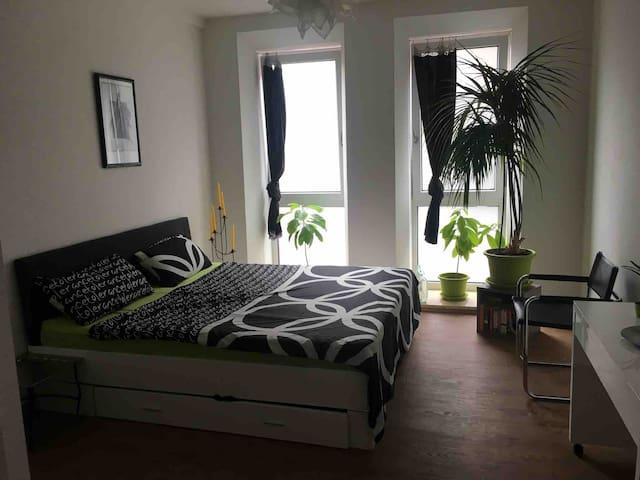 Vielseitig nutzbare Wohnung (80 m2)  in Gostenhof