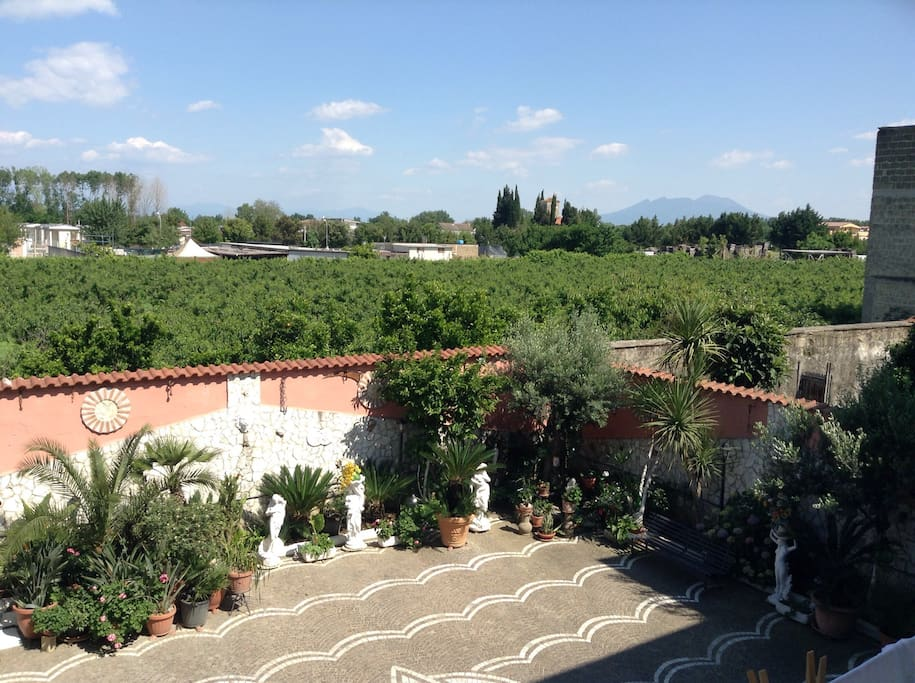 View from the balcony of the house , beautiful vegetation and Vesuvius in the background.