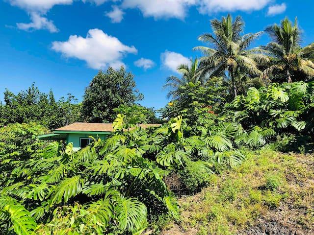 Quaint Hawaiian Cottage