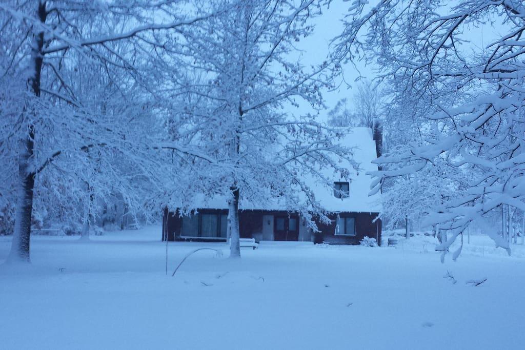 winter in Plainwell
