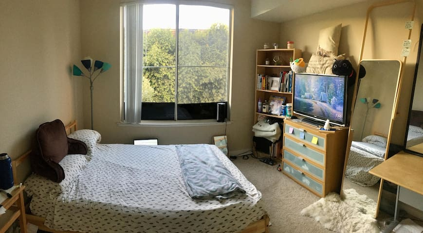 Cozy Private Bedroom near Jtown & SJC