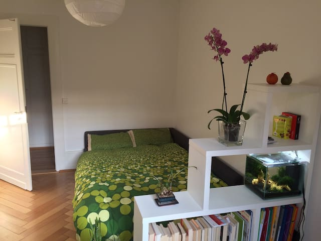 Spacious and quiet private room in Geneva center - Ginebra - Departamento
