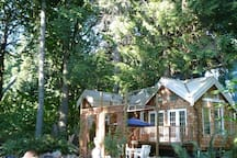 The cottage is nestled in a grove of Cedars.