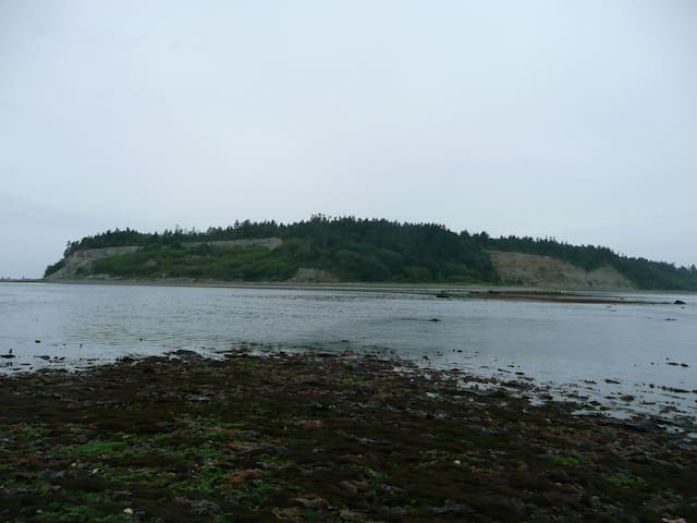 Lily Point at very low tide.