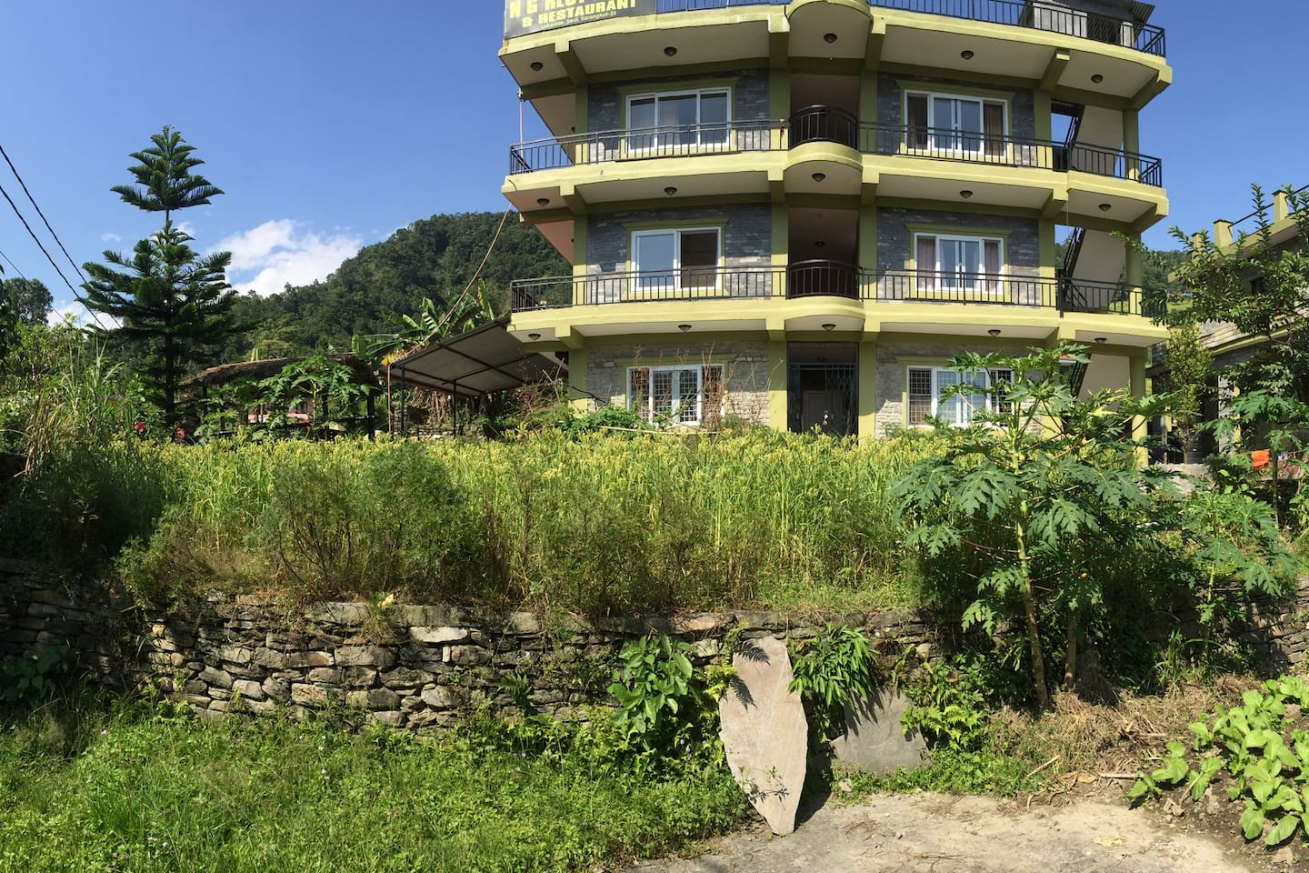 Our organic garden and guest house