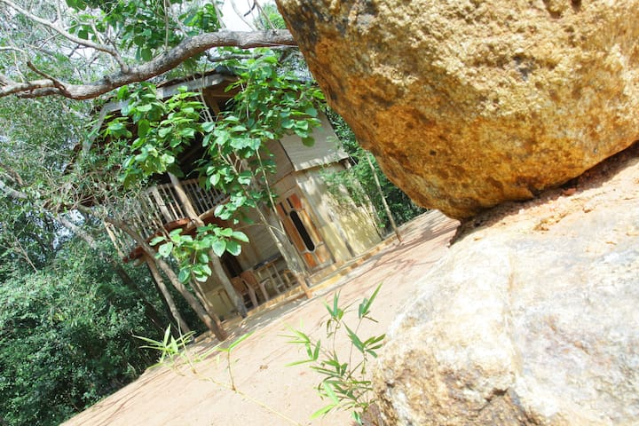 Medawachchiya - House