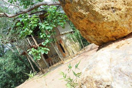Boo Oya Nature Resort - Holzhaus - Medawachchiya