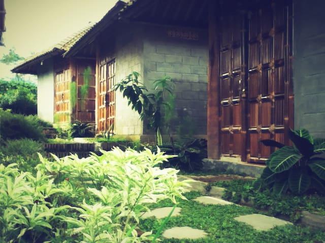 Pondok Bamboo Sendangsari, Dieng - Wonosobo - Blockhütte