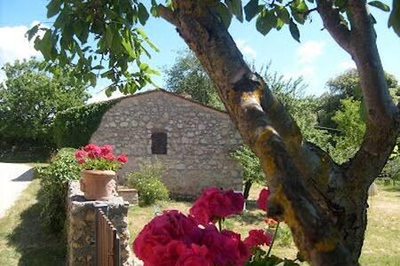Last minute! APARTMENT MALVA - Province of Siena - Wohnung