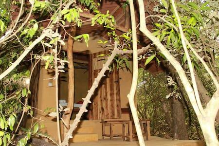 Boo Oya Nature Resort- Brickhouse - Medawachchyia