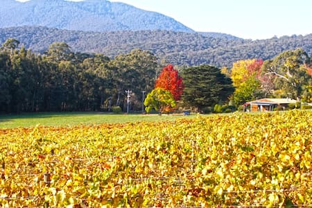 ESCAPE ON VINEYARD! - Healesville