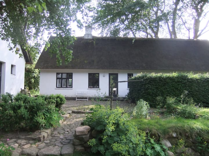 Ulkerup - quiet thatched farmhouse
