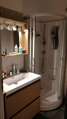 Bathroom / salle de bain