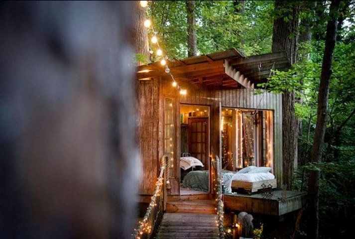 view from deck of bed on platform photo by lindsay appel - Treehouse Masters Tree Houses Inside