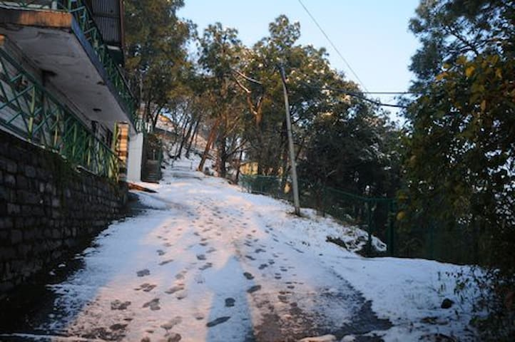 Kasauli, H.P. India - Kasauli - House