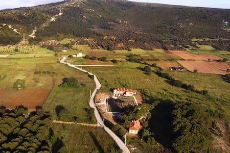 ION Village Rhoa