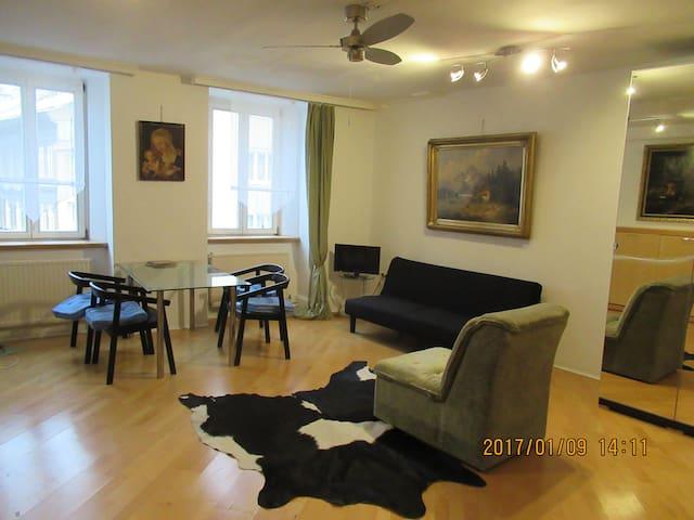 Apartment GS28 15a - Wien - Apartment