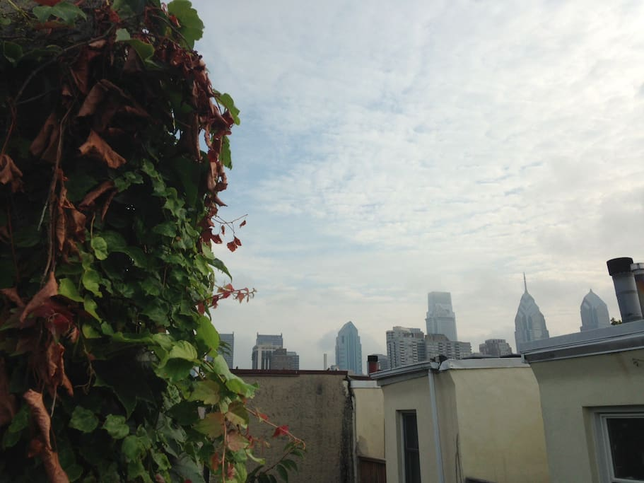 The private rooftop deck has a great view of the city.