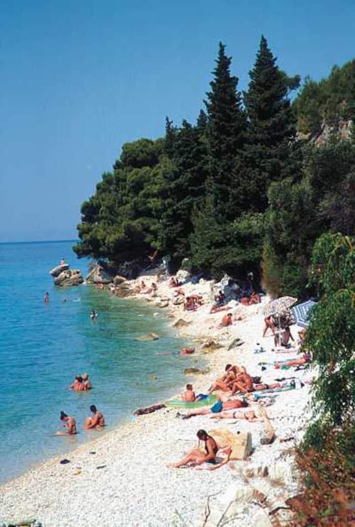 Privat room in Zaostrog Dalmatia