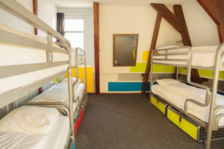 Bed in 6-Bed Mixed Dorm with Ensuite