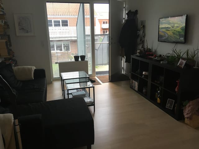 Light and cozy apartment in Odense S. close to SDU
