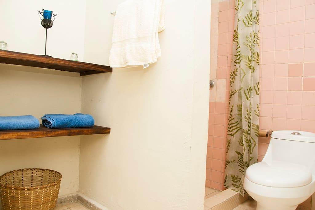 Eco-friendly ensuite bathroom