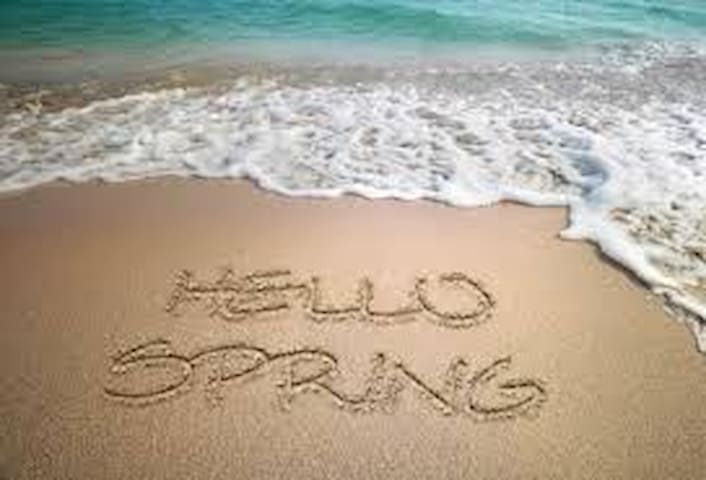 Hello Spring@ Craig's Coastal Cottage - Frankford - Huis