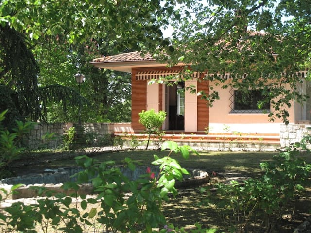 Belle maison avec parc et ruisseau - Gaillac - บ้าน