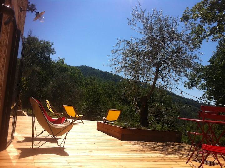 Petit mas avec piscine dans oliveraie