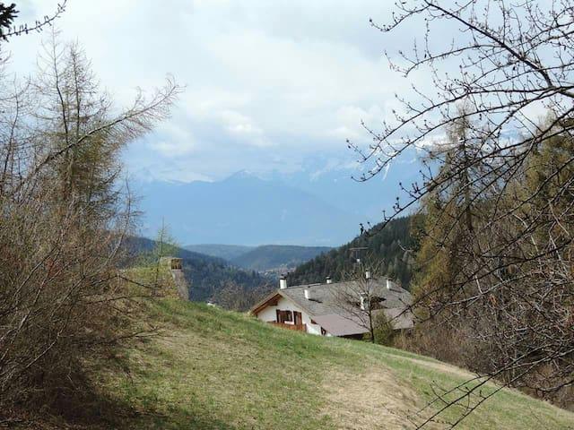 Ruffrè das Dorf der Alpenhoefer!!! - Ruffré - Apartment