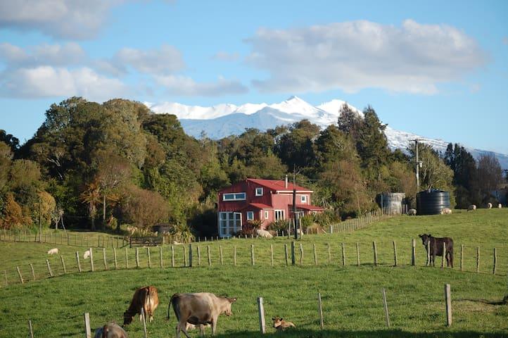 The Barn @ Wood Pigeon Lodge - Raurimu - Talo