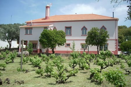 Country House Self-Catering Apartment/B&B – Hoiho - Reguengo