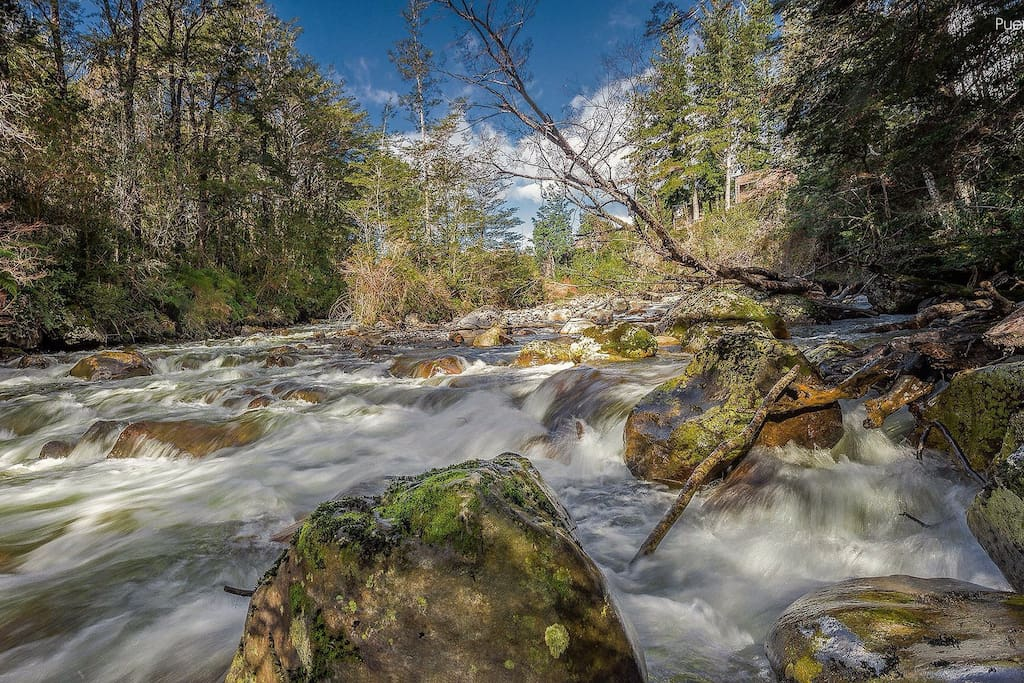 Río Pescado
