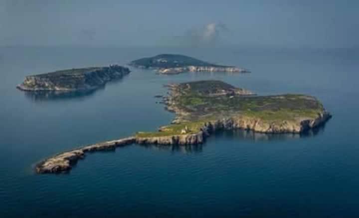 Da Elio: Isole Tremiti BILOCALE Gelsomino x 4