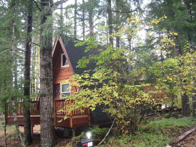 Coal Creek A-Frame Cottage - Packwood - Cabin