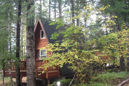 Coal Creek A-Frame Cottage - Packwood