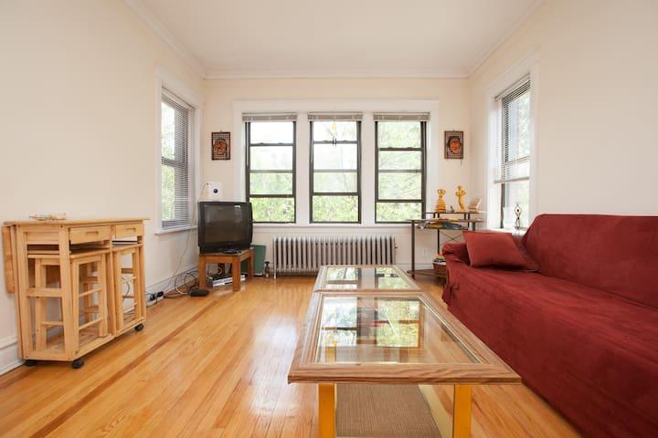 Morning sun illuminates this spacious living and yoga room.
