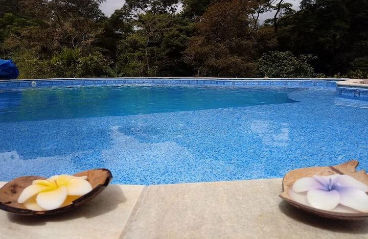 Chácara com piscina. 1:30h de SP.