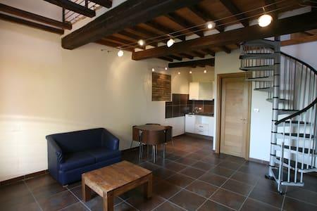 Villa Castellazzo Farm House - Reggio Emilia