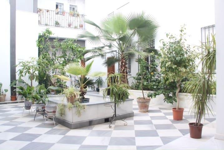 Moderno estudio en Sevilla